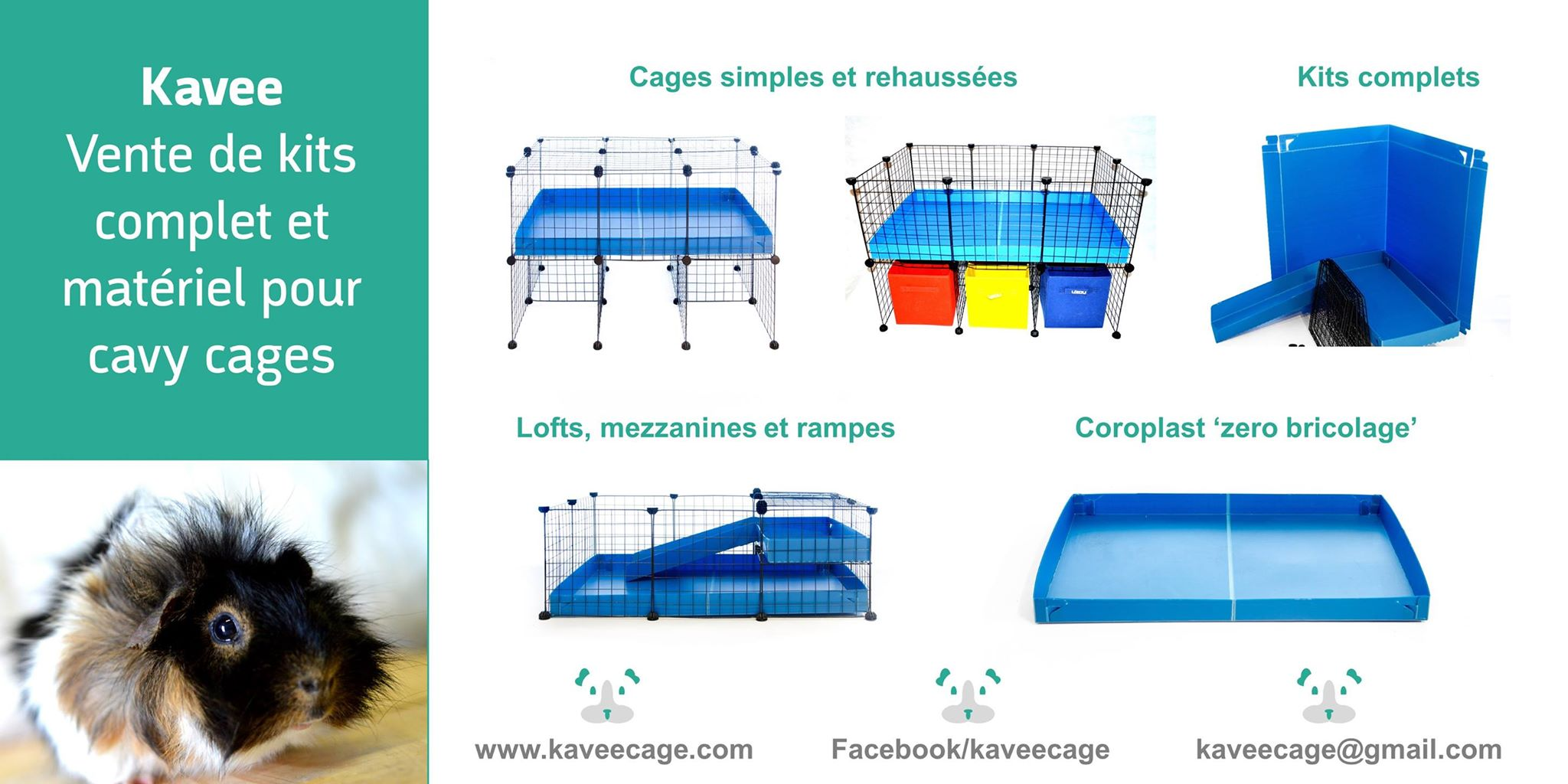 cavy cage